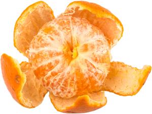 Orange depicting the role of fascia